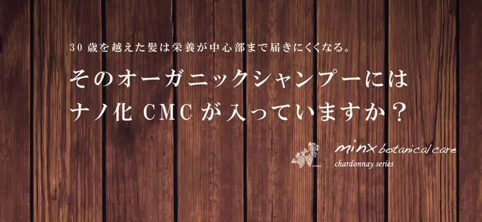 ナノ化CMC